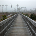 Boardwalk State Park